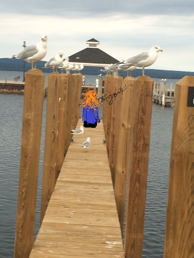 trip-potoskey-and-birds-and-millie